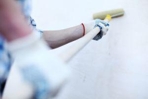 south shore painter